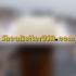 sheabutterusa.com
