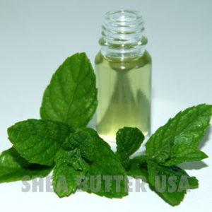 Peppermint Mentha Piperita Oil