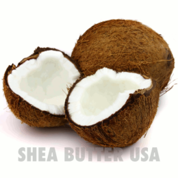 Wholesale organic virgin coconut oil